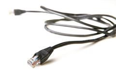 RJ-45 cable (isolated) Stock Photos