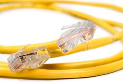 RJ-45 And Cat 5 Cable. RJ-45M Connectors on Coiled Yellow Cat 5 Wire Stock Image