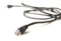 Rj-45 (geïsoleerden) kabel Stock Foto's