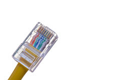 RJ-45 jack fitted on cat5e utp cable Stock Photography
