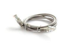 RJ45-de kabel van de Netwerkcomputer Royalty-vrije Stock Afbeelding