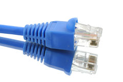 rj för 45 kabel Arkivfoto
