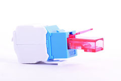 Rj45 female. For computer network and more Royalty Free Stock Image