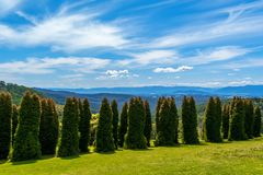 RJ Hamer arboretum 2 Stock Photography