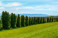 RJ Hamer arboretum 1 Stock Image