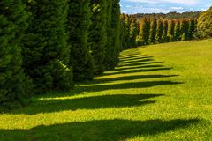 RJ Hamer arboretum 7 Royalty Free Stock Photo