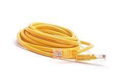 Rj 45 kabel Royaltyfri Fotografi