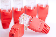 RJ45 Many Plugs (center plug focus). RJ45 Many Plugs focus on the center plug Royalty Free Stock Images