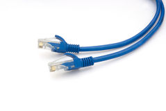 RJ45. Computer network connecting cable Royalty Free Stock Photo