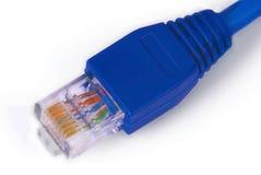 Rj45 - connecteur de réseau informatique Image stock