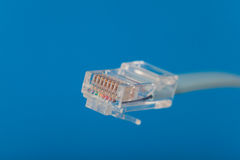 RJ45 connector Stock Images