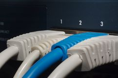 RJ45 jacks in switch Stock Photos