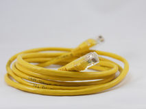 Free Rj45 Patch Cable Royalty Free Stock Images - 12327579
