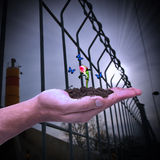 Ręka trzyma róża pączek Pojęcie nowy życie, narodziny, odradzanie i nadzieja; ekologia Fotografia Royalty Free