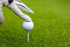 Ręka umieszcza piłkę golfową na trójniku nad polem golfowym Zdjęcie Royalty Free