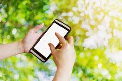 Ręki kobieta używa telefon w ogródzie z bokeh i światłem słonecznym , Obraz Stock