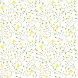 Ręki malować wodnego koloru rośliny Na biały tle bezszwowy wzór Obraz Royalty Free
