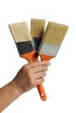 Ręki Mienia Paintbrushes Zdjęcia Stock
