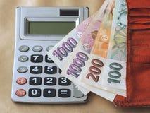 räkna pengar Royaltyfri Foto