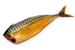 rökt fisk Arkivbild
