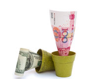 RMB florecientes y se descoloran USD Fotos de archivo
