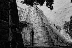 RMM03_maya_culture_34 免版税库存照片
