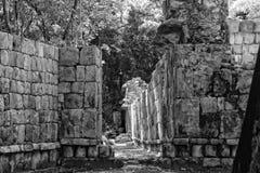 RMM03_maya_culture_33 免版税库存照片