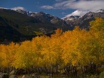 RMNP Autumn Stock Images