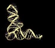 RNA Imagens de Stock Royalty Free