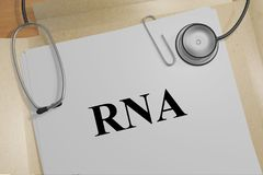 RNA - genetic concept. 3D illustration of RNA title on a medical document Royalty Free Stock Photos