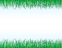 Ränder des grünen Grases Lizenzfreies Stockbild