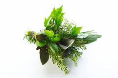 różni ziele Zdjęcia Stock