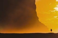RNP Garie falezy słońca ptaka kąt zdjęcie royalty free