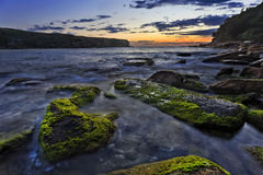 RNP moss boulders dark. Seascape of pacific near Sydney in Royal National Park at sunrise with green moss boulders in foreground against raising sun and open royalty free stock photography
