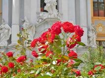 Rnstein do ¼ de DÃ no vale de Wachau (perto de Viena) - rosas Fotografia de Stock