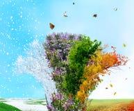 rnWinter de cuatro estaciones, verano, otoño, resorte Foto de archivo