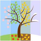 rnWinter van de vier seizoenen, de zomer, de herfst, de lente Royalty-vrije Stock Foto