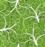 Roślina bezszwowy wzór, wektor Fotografia Stock