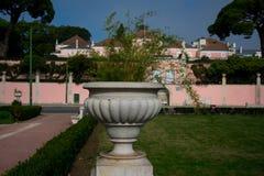 Roślina garnek przy Afonso de Albuquerque ogródem zdjęcie stock