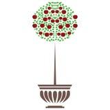 Roślina garnka drzewna ilustracja przy białym tłem Ilustracja Wektor