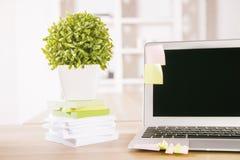Roślina i laptop Obrazy Stock