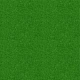 Roślina liścia tekstura Bezszwowy deseniowy tło również zwrócić corel ilustracji wektora Zdjęcie Royalty Free