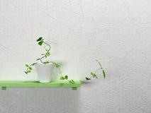 Roślina na półce royalty ilustracja