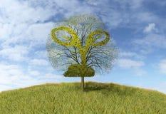 Roślina znak na drzewie ilustracji