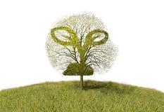 Roślina znak na drzewie royalty ilustracja
