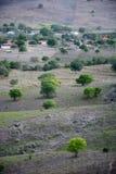 Roślinność Brazylijski północnego wschodu suchy iluminujący z ciepłymi kolorami zmierzch zdjęcia royalty free