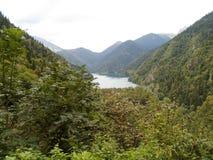 Roślinność, drzewa, ulistnienie, jezioro, woda, piękna, wzgórze, widok, natura, zieleń obrazy royalty free