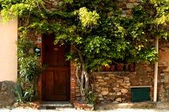 roślinność drzwi Obrazy Stock