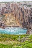 Roślinność, falezy i ocean w Cabo De Sao Vincente, Fotografia Royalty Free