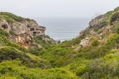 Roślinność, falezy i ocean w Cabo De Sao Vincente, Obrazy Royalty Free